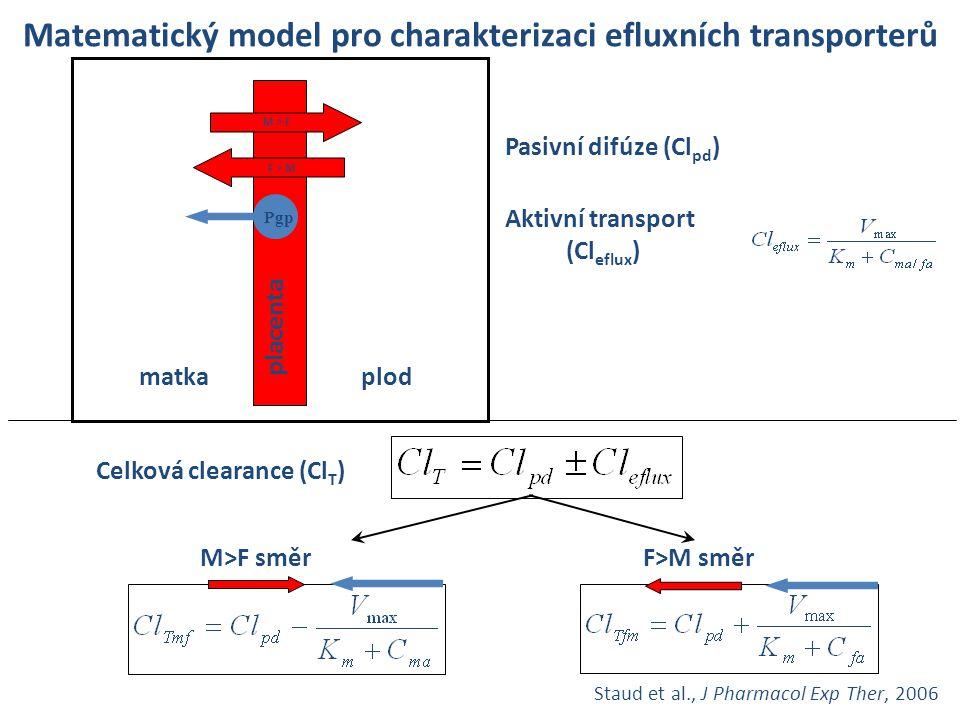 Matematický model pro charakterizaci efluxních transporterů