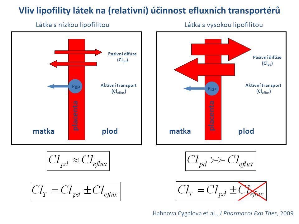 Vliv lipofility látek na (relativní) účinnost efluxních transportérů