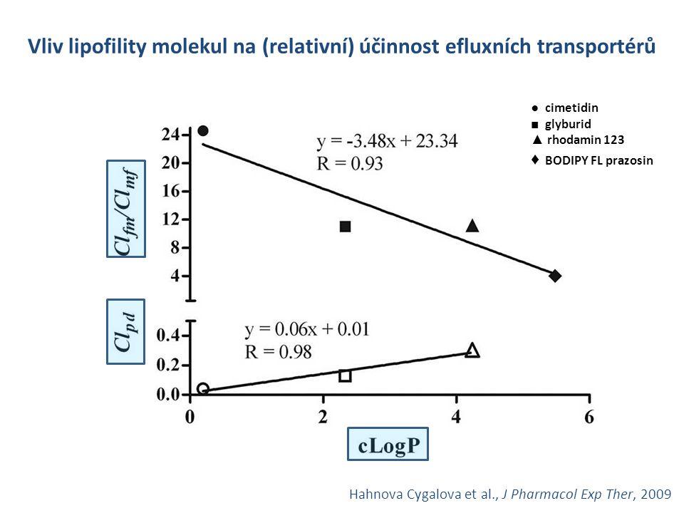 Vliv lipofility molekul na (relativní) účinnost efluxních transportérů