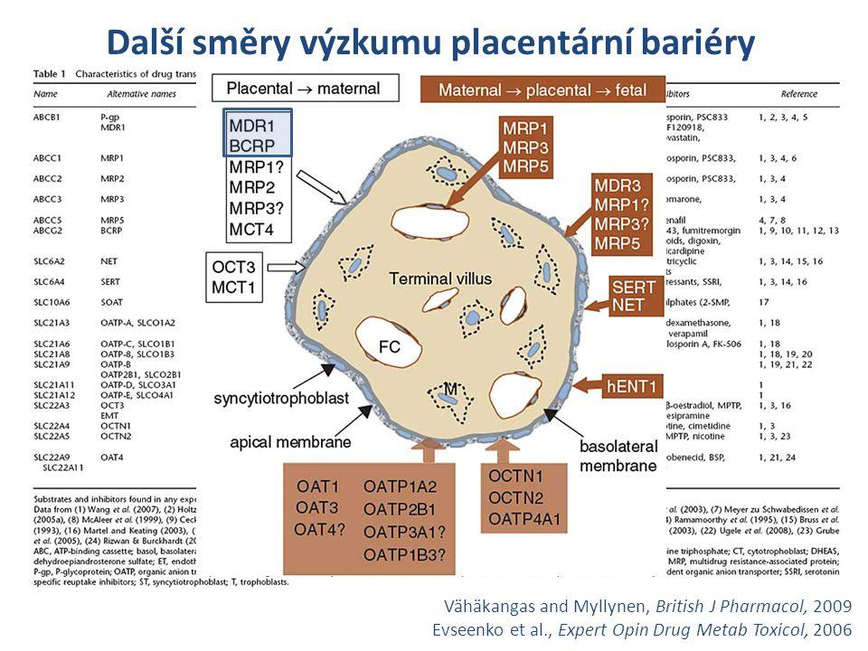 Další směry výzkumu placentární bariéry