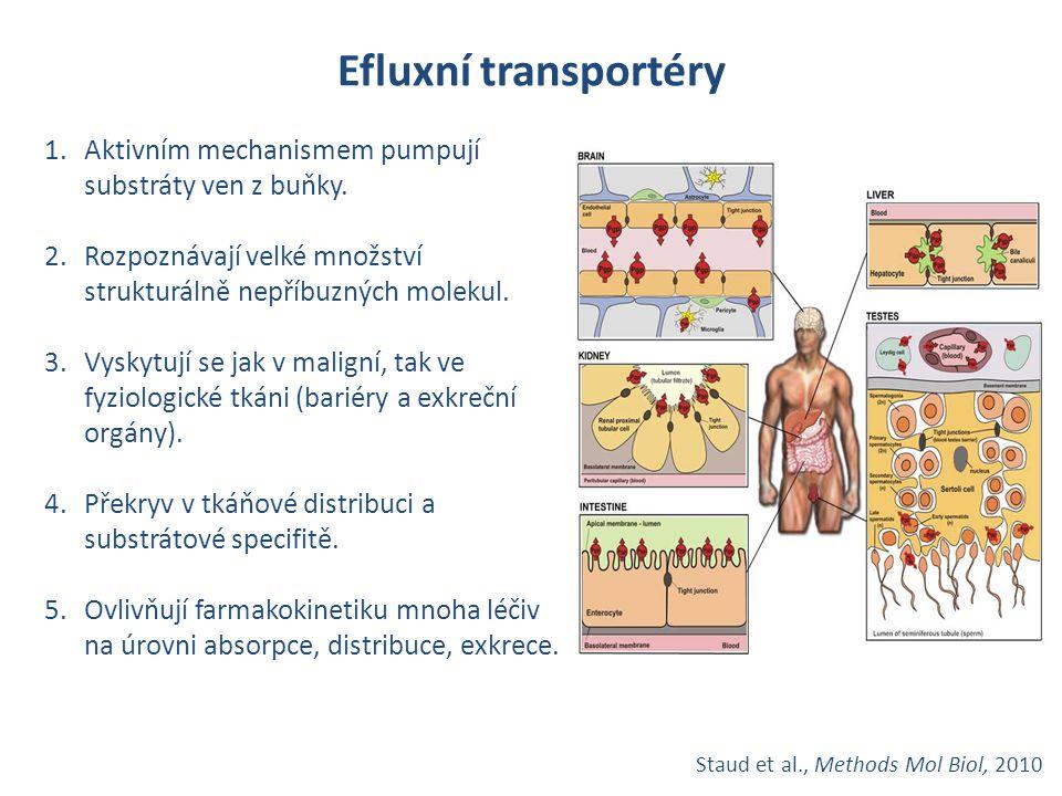 Efluxní transportéry Aktivním mechanismem pumpují substráty ven z buňky. Rozpoznávají velké množství strukturálně nepříbuzných molekul.