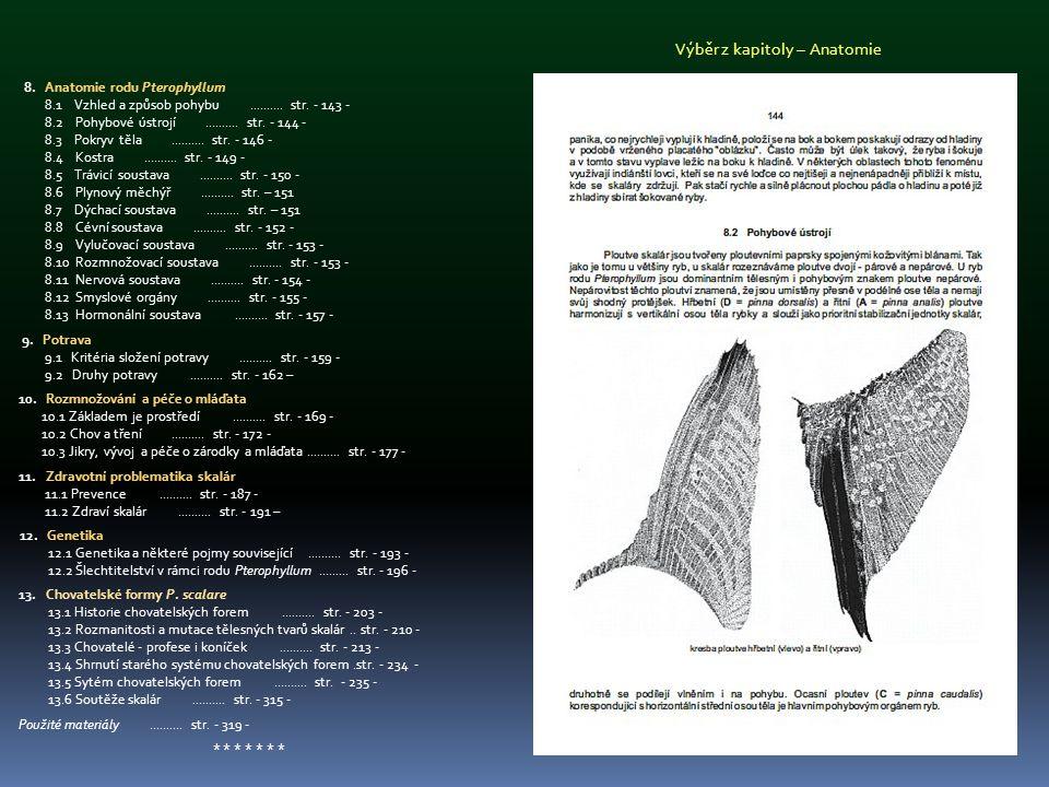 Výběr z kapitoly – Anatomie