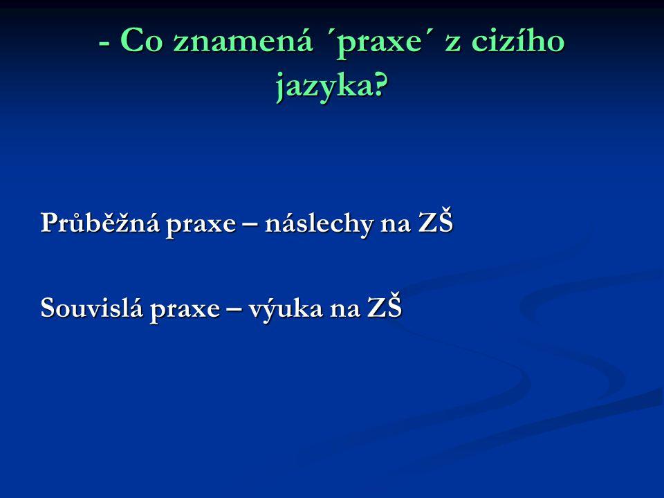- Co znamená ´praxe´ z cizího jazyka