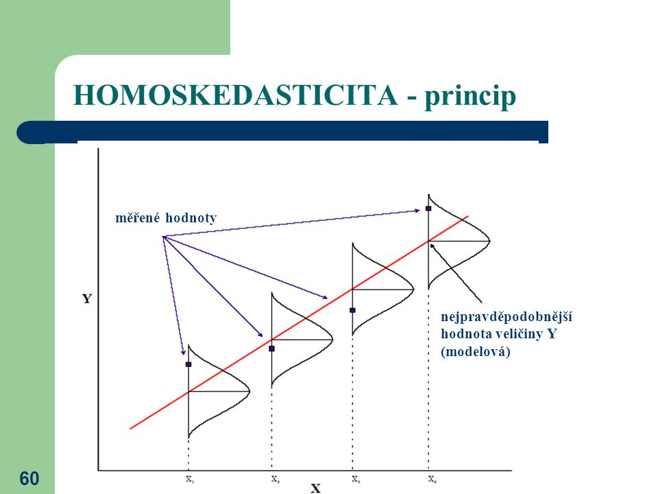 HOMOSKEDASTICITA - princip