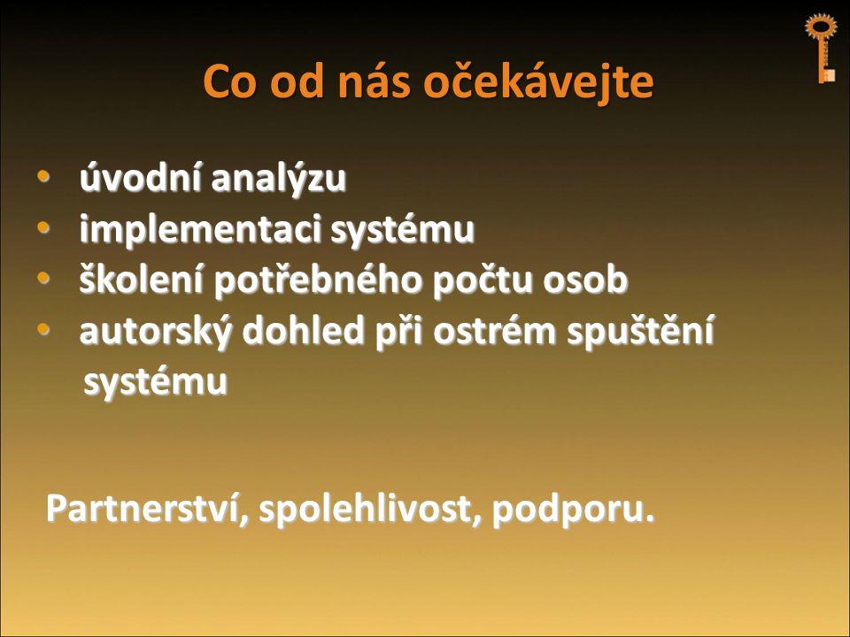 Co od nás očekávejte úvodní analýzu implementaci systému
