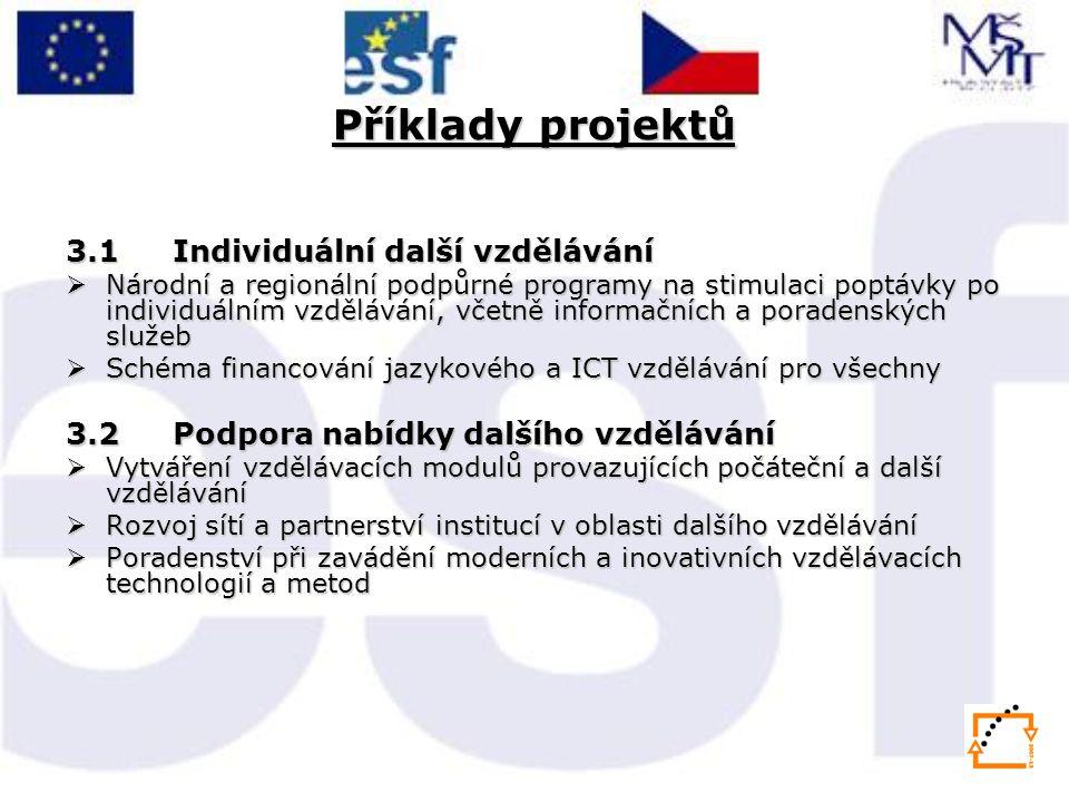 Příklady projektů 3.1 Individuální další vzdělávání