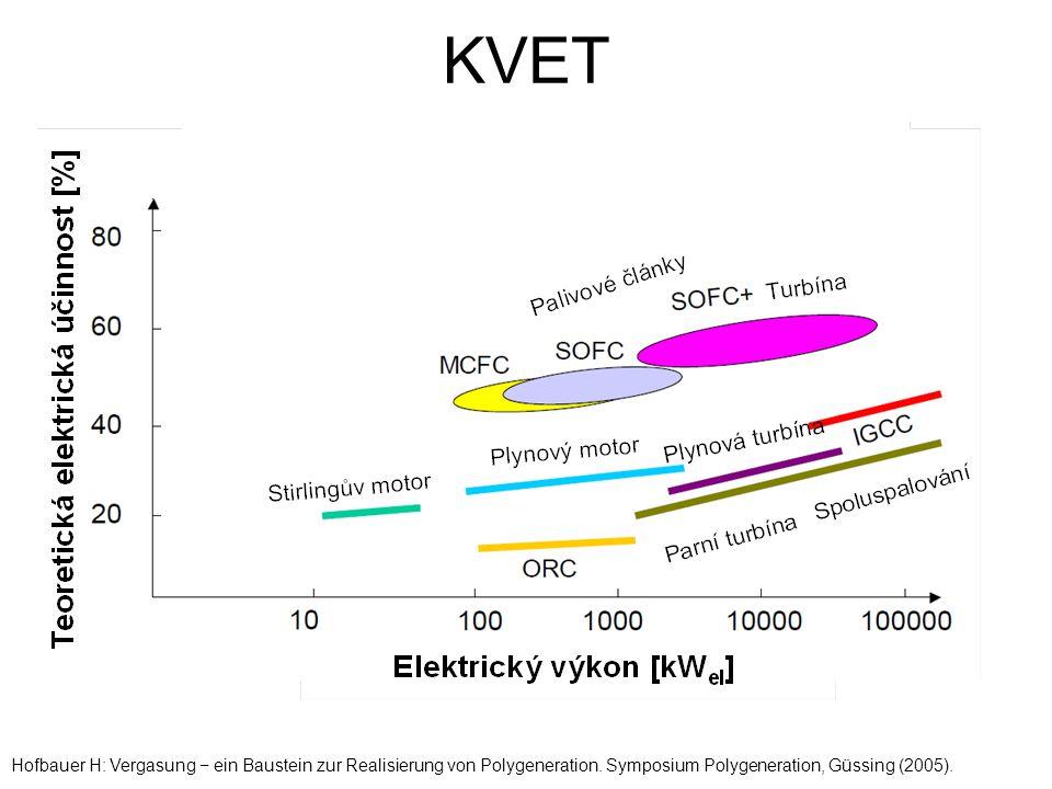KVET Hofbauer H: Vergasung − ein Baustein zur Realisierung von Polygeneration.