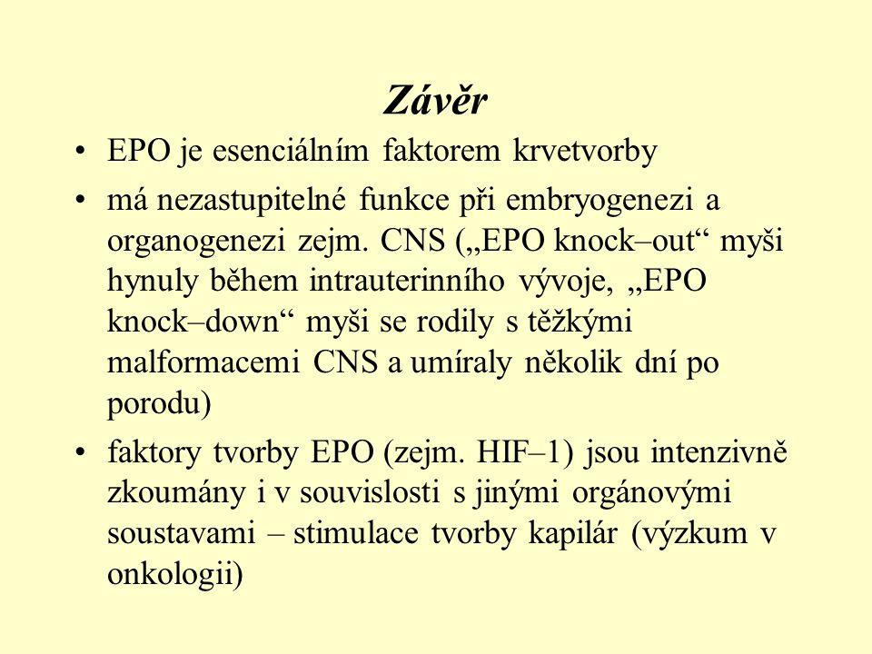 Závěr EPO je esenciálním faktorem krvetvorby