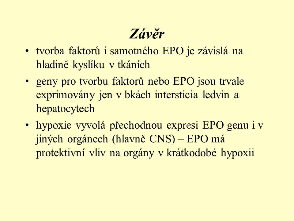 Závěr tvorba faktorů i samotného EPO je závislá na hladině kyslíku v tkáních.