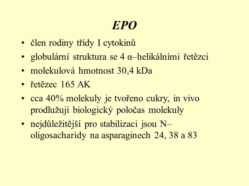 EPO člen rodiny třídy I cytokinů