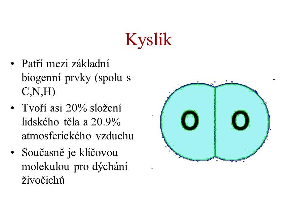 Kyslík Patří mezi základní biogenní prvky (spolu s C,N,H)