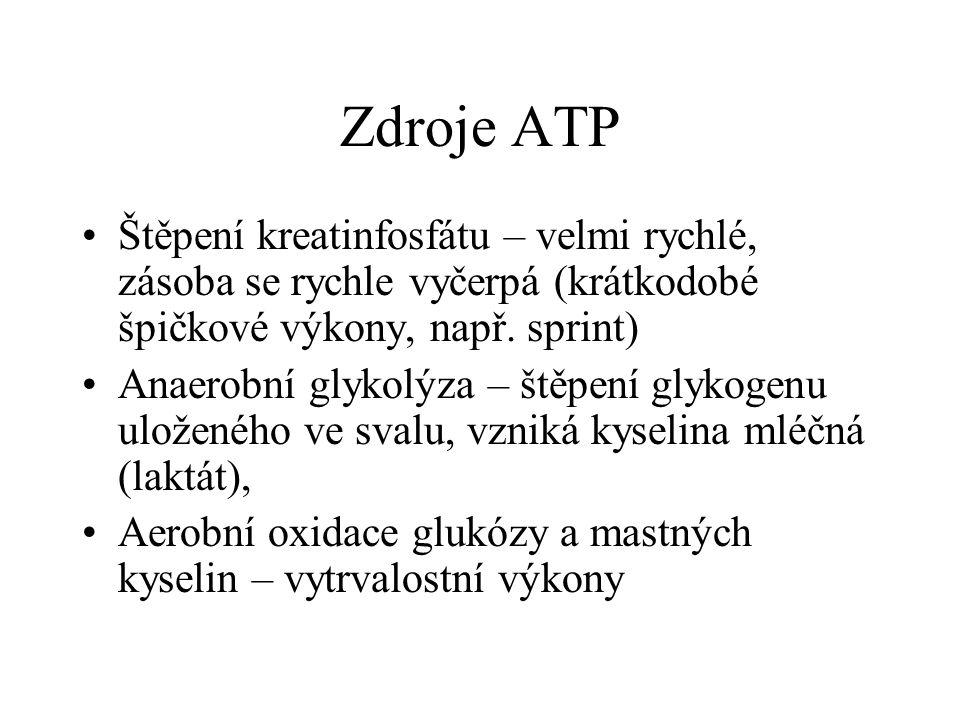 Zdroje ATP Štěpení kreatinfosfátu – velmi rychlé, zásoba se rychle vyčerpá (krátkodobé špičkové výkony, např. sprint)