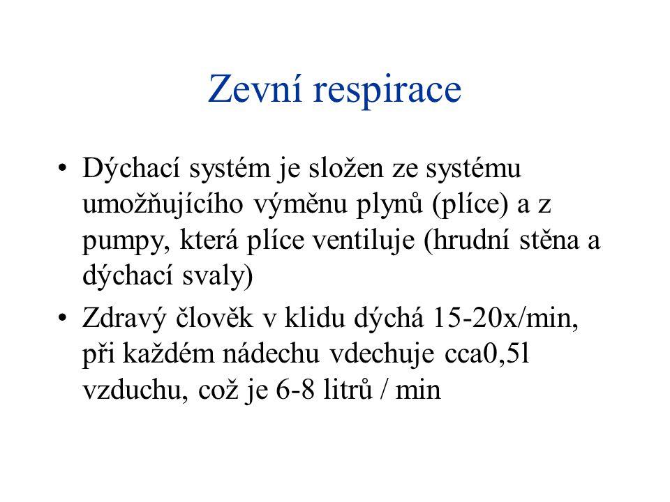 Zevní respirace Dýchací systém je složen ze systému umožňujícího výměnu plynů (plíce) a z pumpy, která plíce ventiluje (hrudní stěna a dýchací svaly)