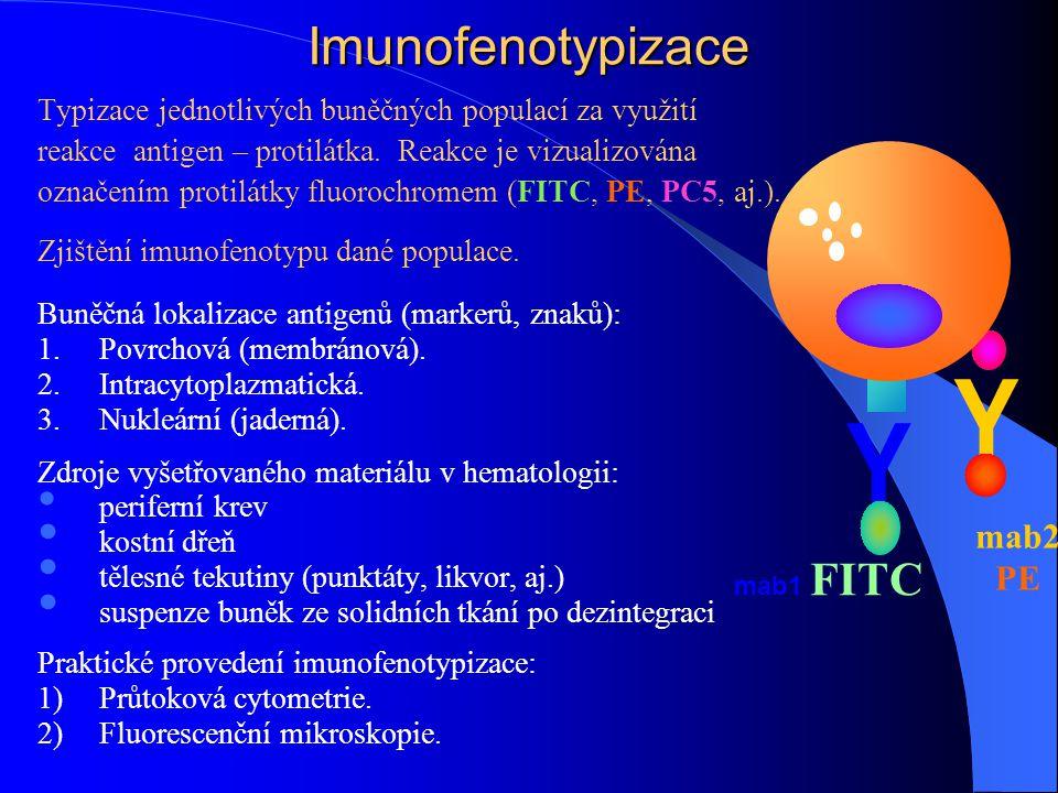 Y Y Imunofenotypizace mab2 PE