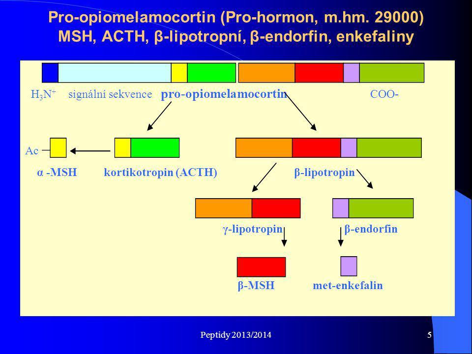Pro-opiomelamocortin (Pro-hormon, m. hm