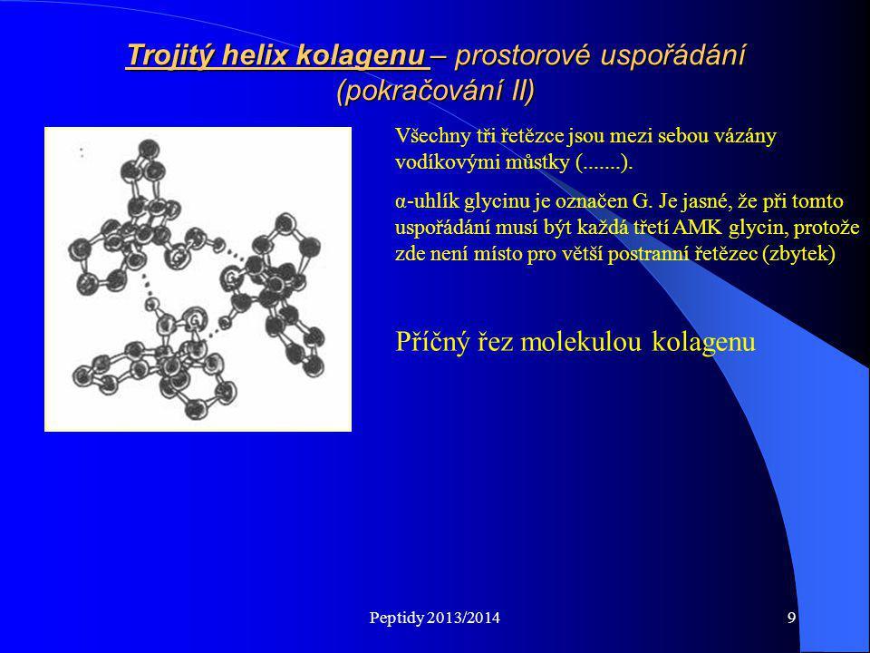 Trojitý helix kolagenu – prostorové uspořádání (pokračování II)