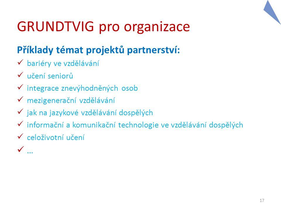 GRUNDTVIG pro organizace