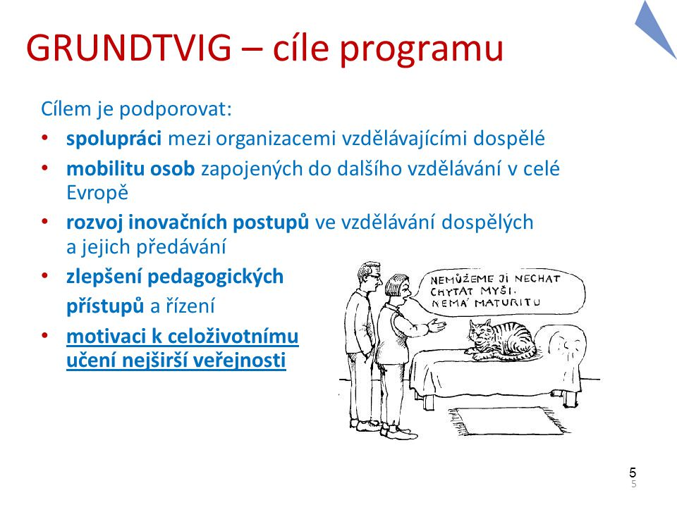 GRUNDTVIG – cíle programu