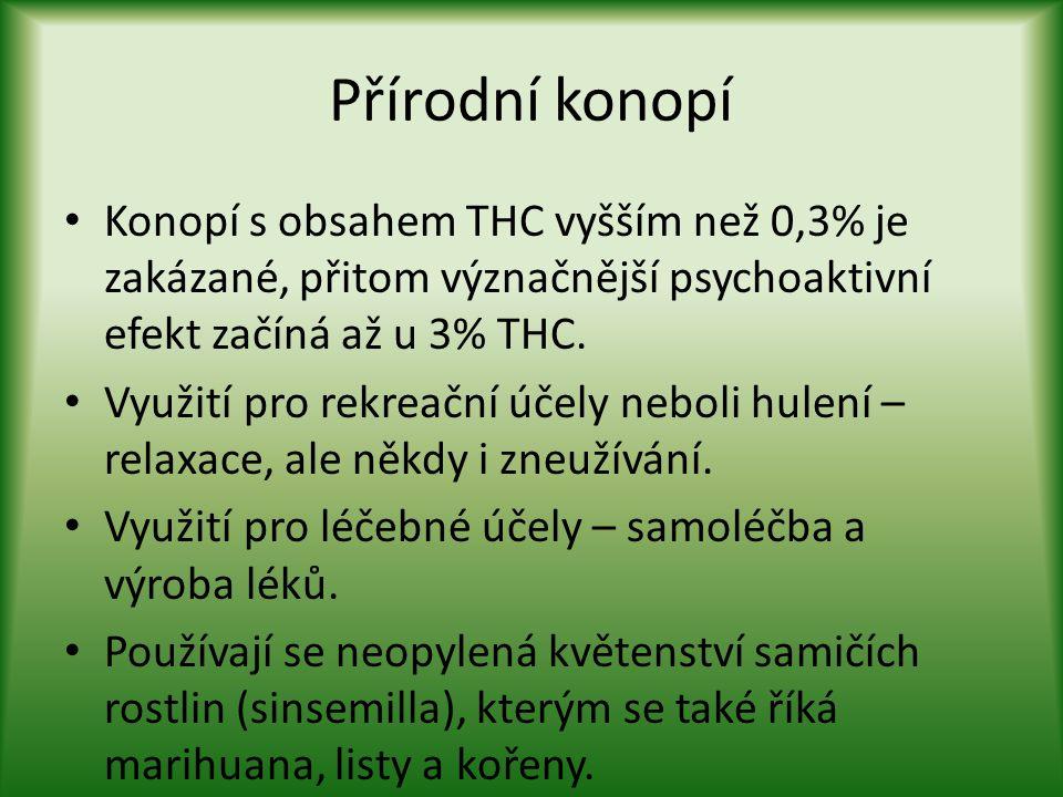 Přírodní konopí Konopí s obsahem THC vyšším než 0,3% je zakázané, přitom význačnější psychoaktivní efekt začíná až u 3% THC.