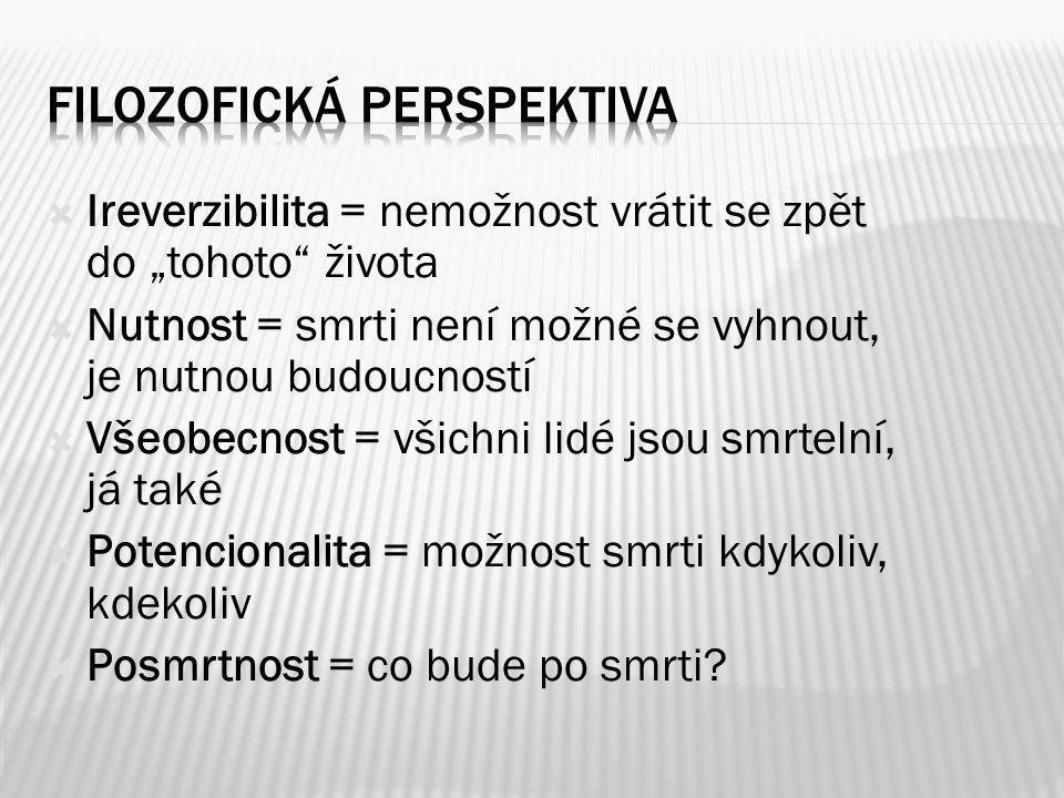 Filozofická perspektiva