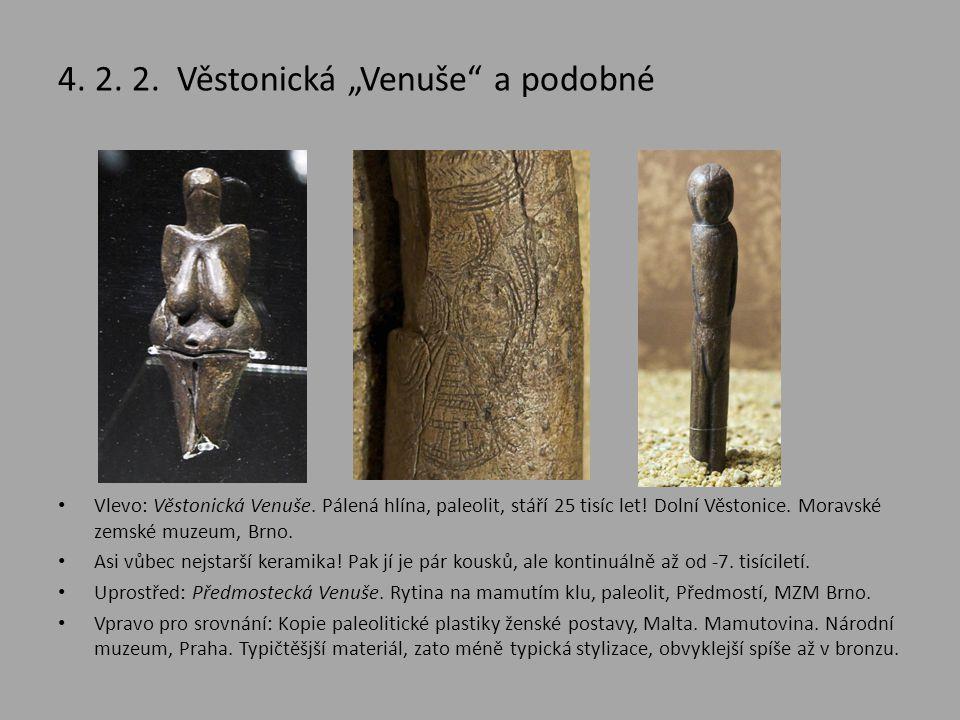 """4. 2. 2. Věstonická """"Venuše a podobné"""