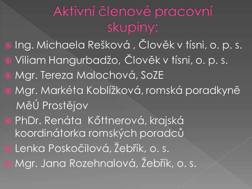 Aktivní členové pracovní skupiny: