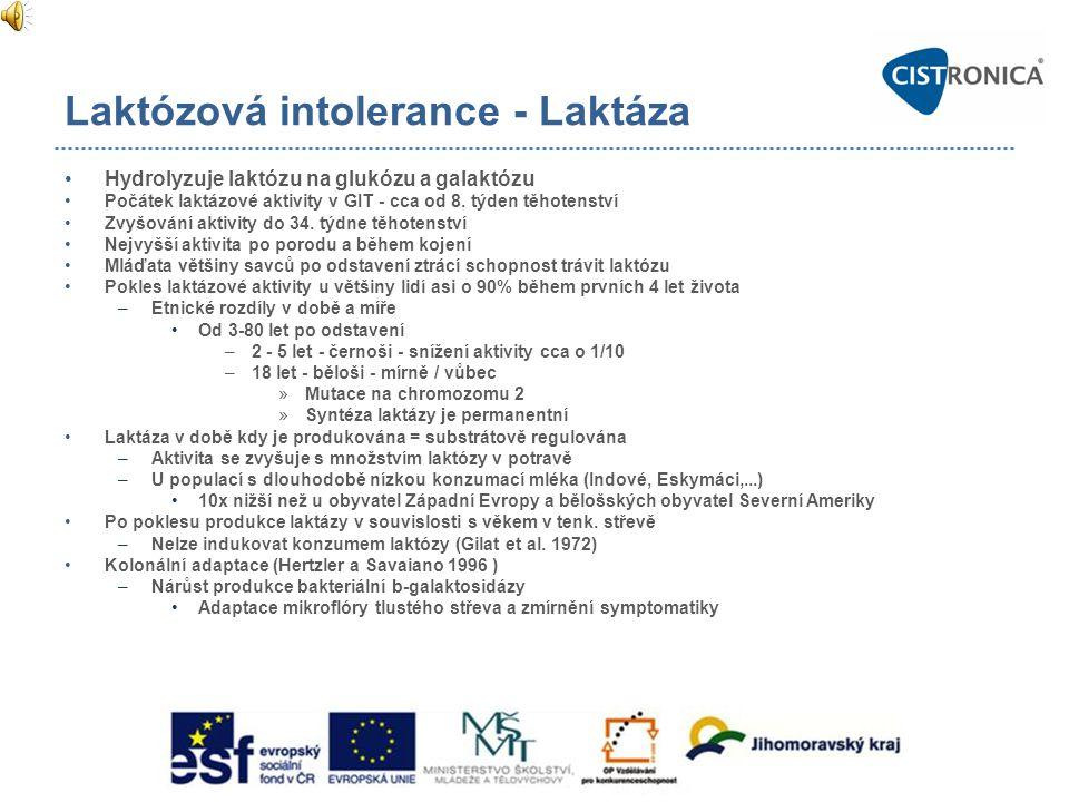 Laktózová intolerance - Laktáza