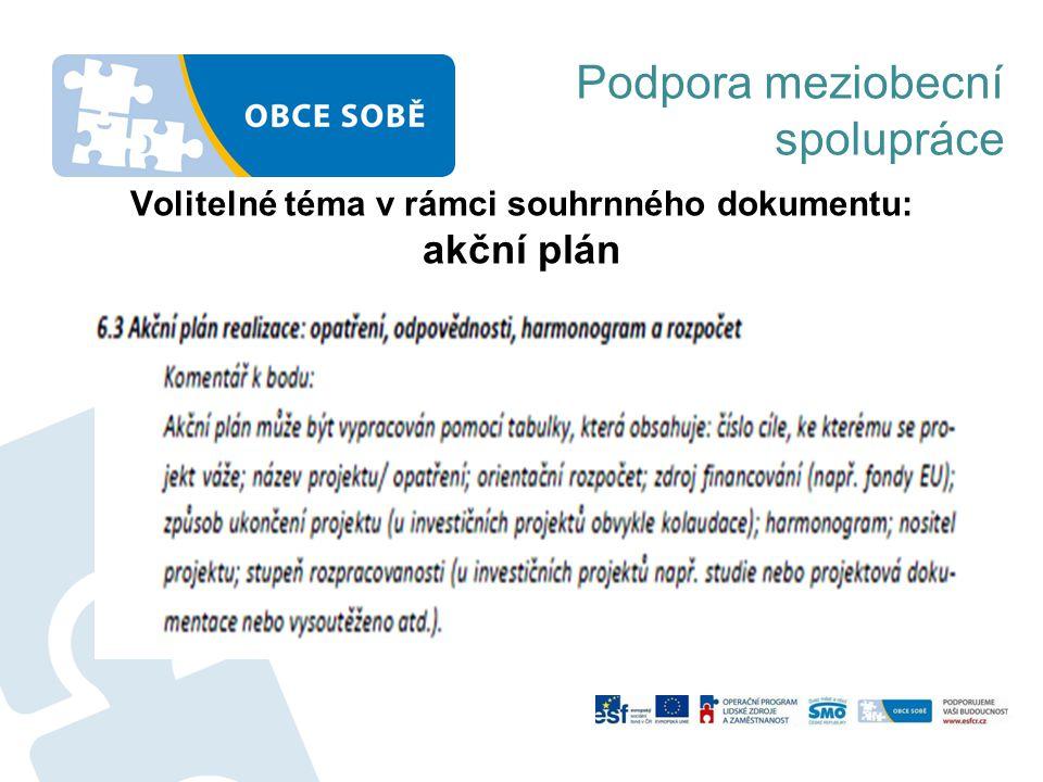 Volitelné téma v rámci souhrnného dokumentu: akční plán