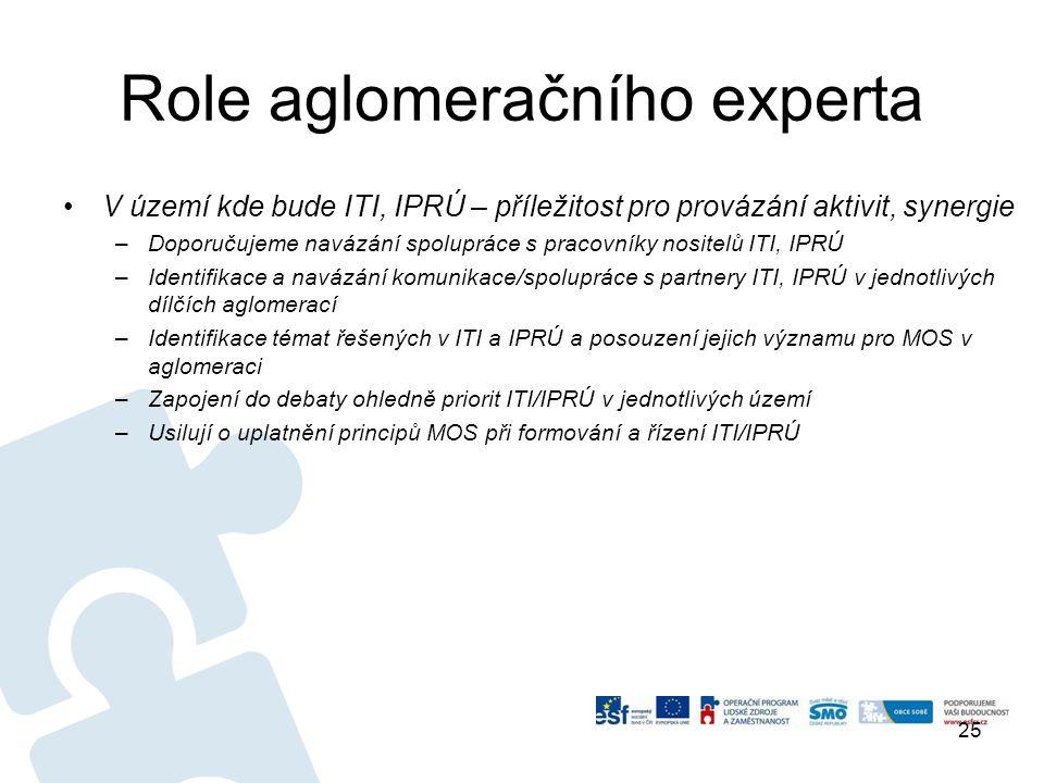 Role aglomeračního experta