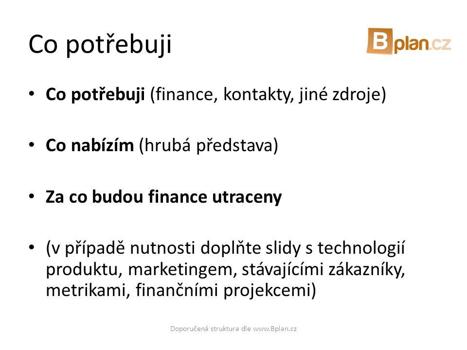 Doporučená struktura dle www.Bplan.cz