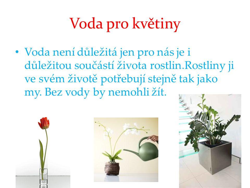 Voda pro květiny