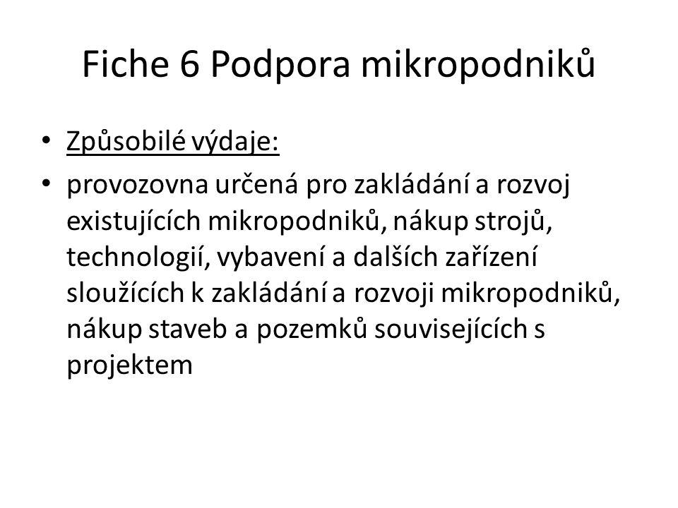 Fiche 6 Podpora mikropodniků