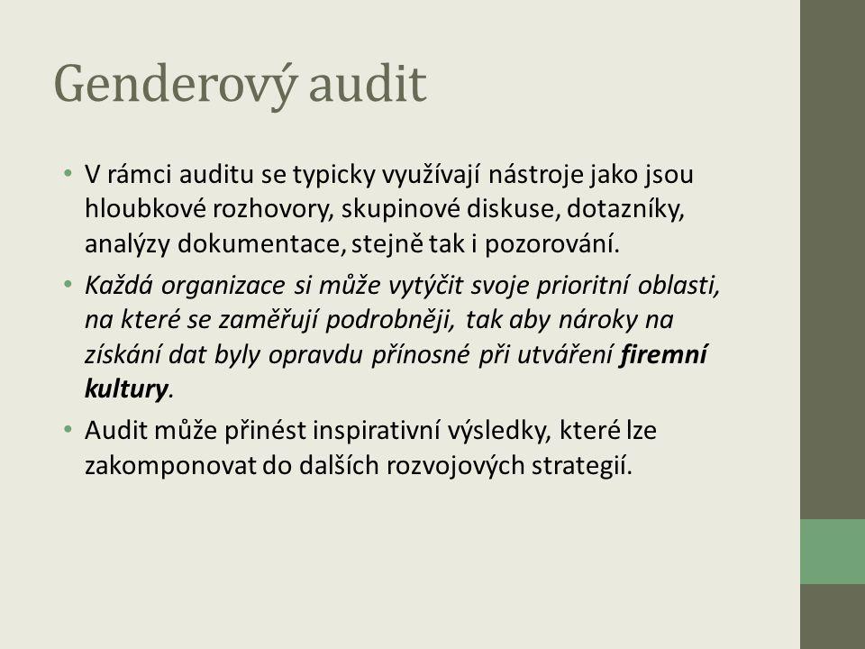 Genderový audit