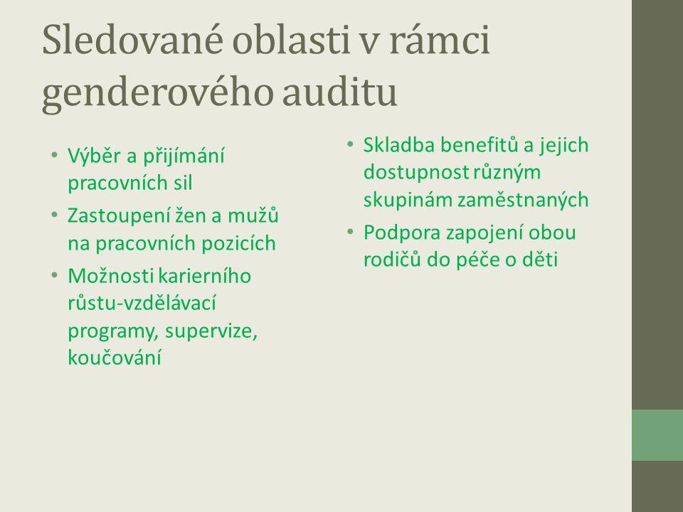 Sledované oblasti v rámci genderového auditu