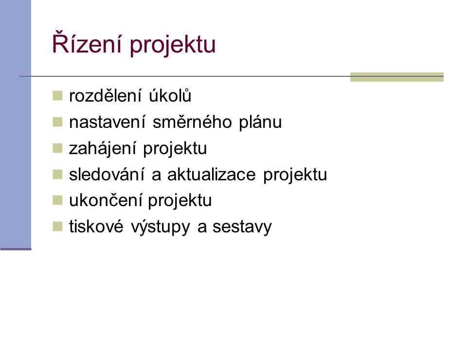 Řízení projektu rozdělení úkolů nastavení směrného plánu