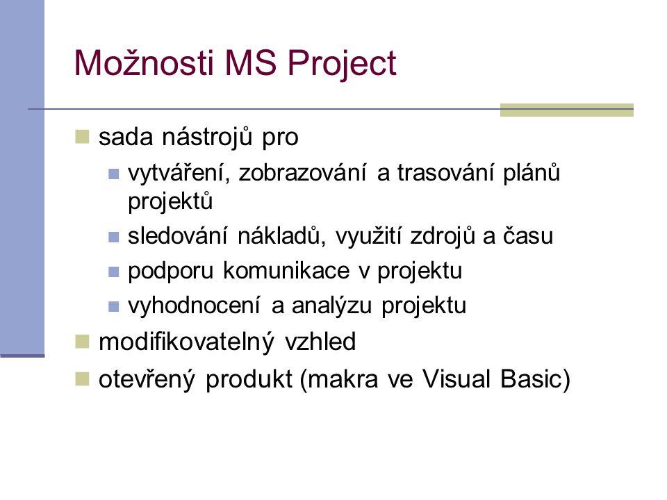 Možnosti MS Project sada nástrojů pro modifikovatelný vzhled