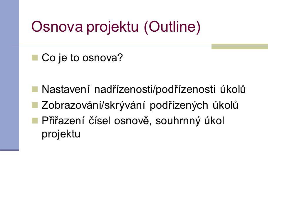 Osnova projektu (Outline)