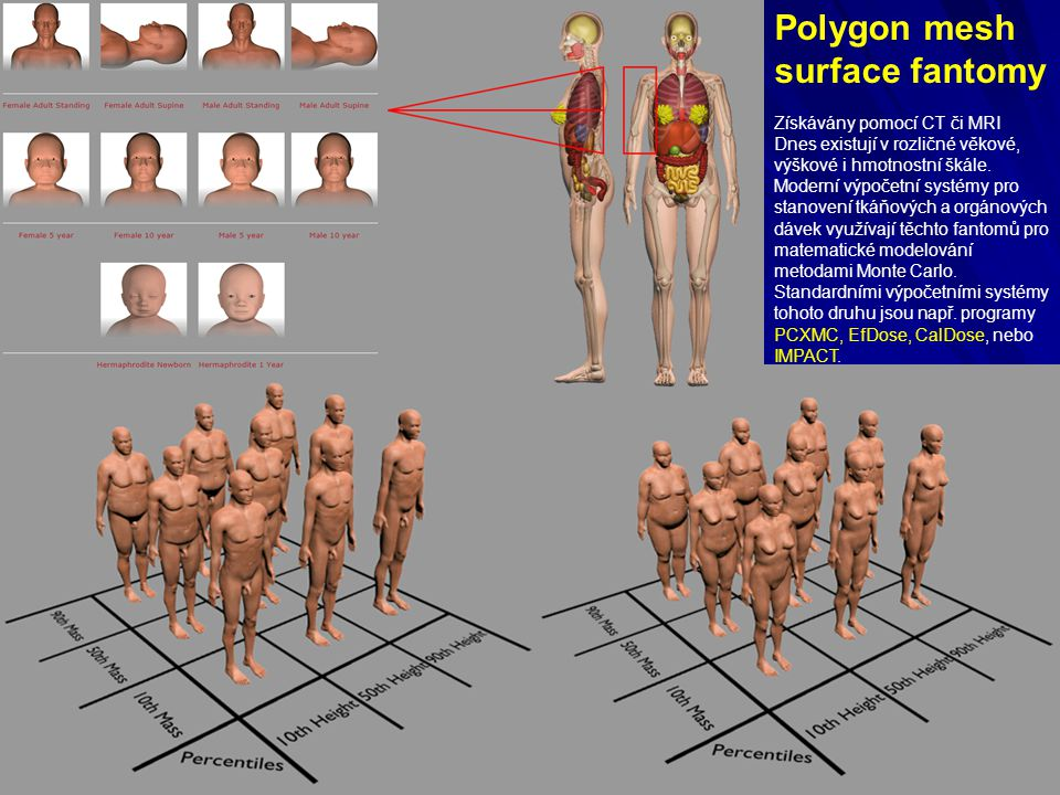 Polygon mesh surface fantomy