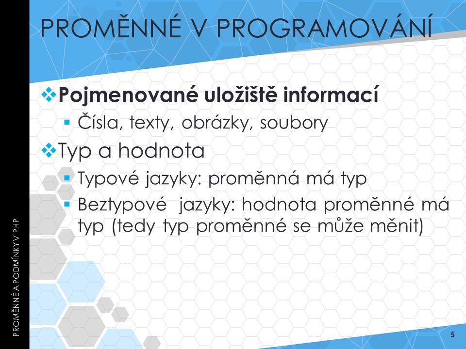Proměnné v Programování