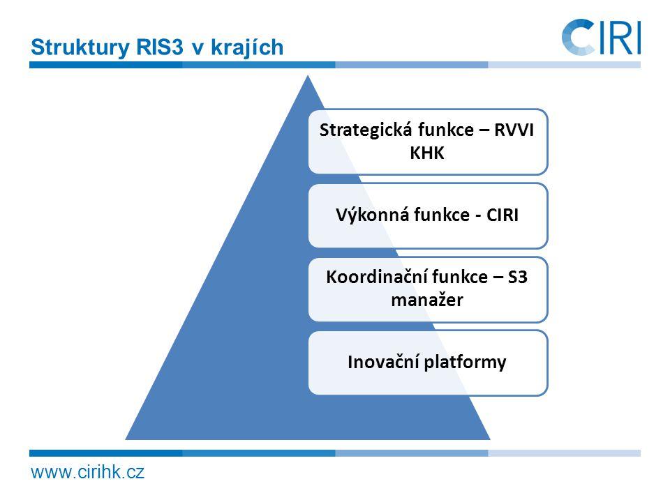 Strategická funkce – RVVI KHK Koordinační funkce – S3 manažer