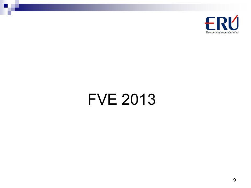 FVE 2013