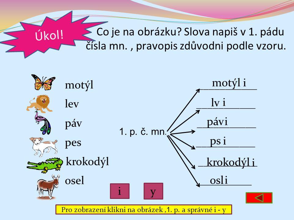 Pro zobrazení klikni na obrázek ,1. p. a správné i - y