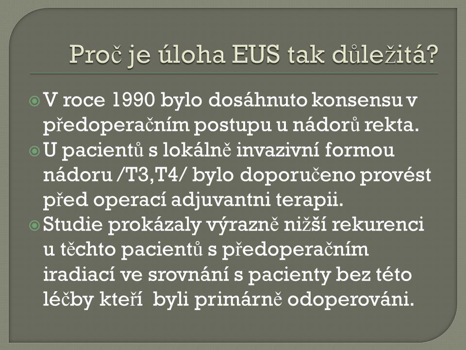 Proč je úloha EUS tak důležitá