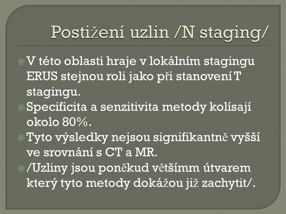 Postižení uzlin /N staging/