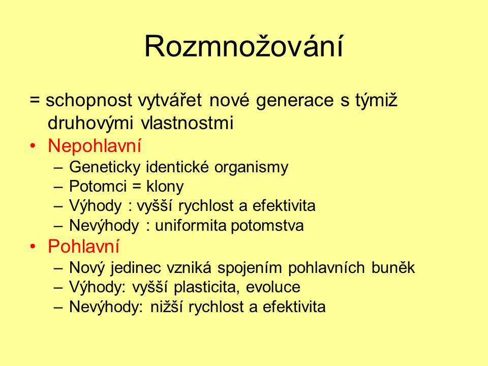 Rozmnožování = schopnost vytvářet nové generace s týmiž druhovými vlastnostmi. Nepohlavní. Geneticky identické organismy.