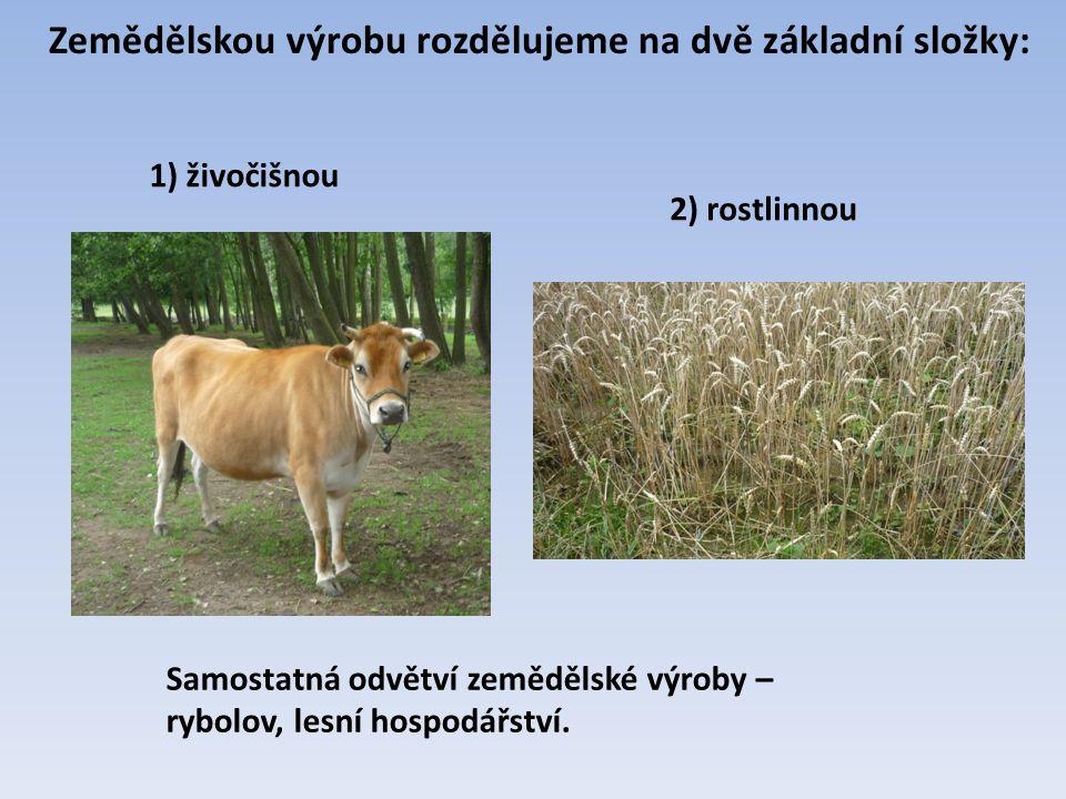 Zemědělskou výrobu rozdělujeme na dvě základní složky: