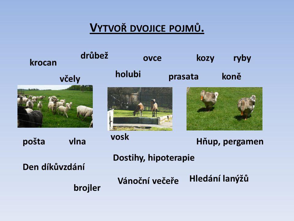 Vytvoř dvojice pojmů. drůbež ovce kozy ryby krocan holubi prasata koně