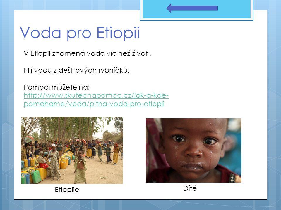 Voda pro Etiopii V Etiopii znamená voda víc než život .