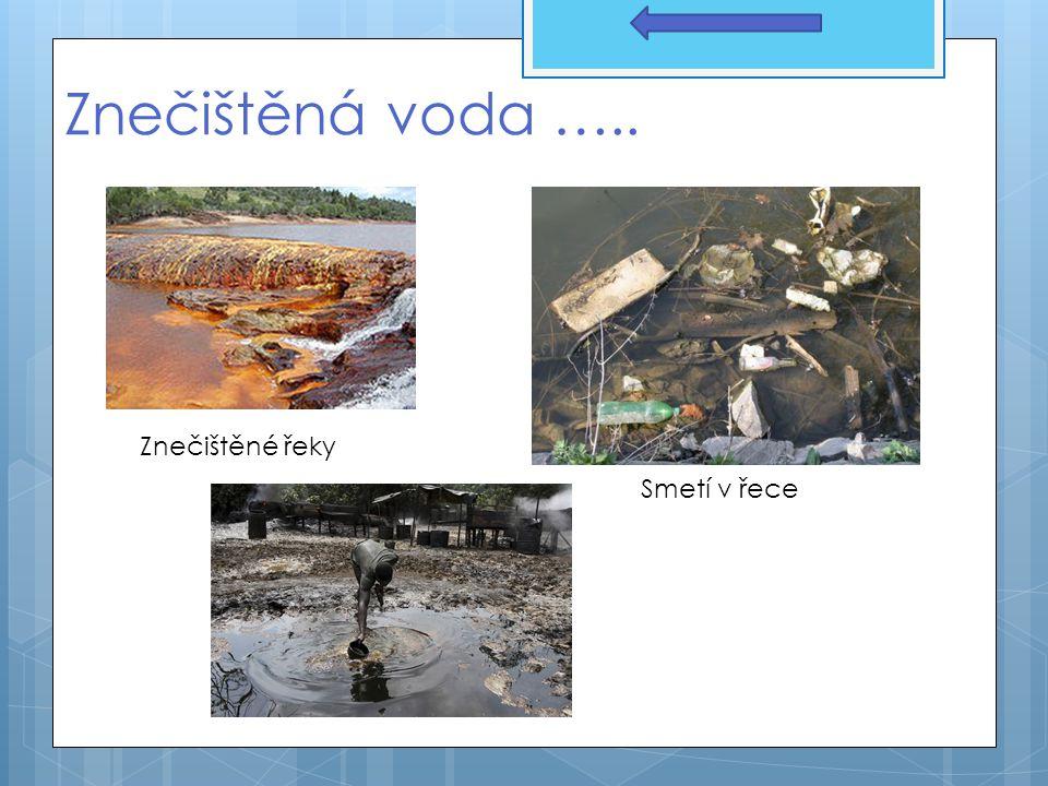 Znečištěná voda ….. Znečištěné řeky Smetí v řece