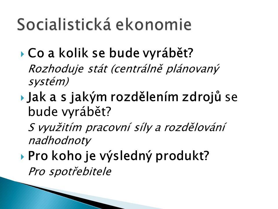Socialistická ekonomie
